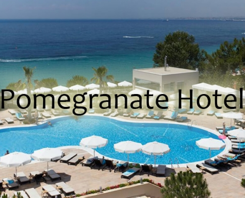 taxi transfers to pomegranate Spa Hotel