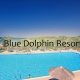Taxi transfers to Blue Dolphin Resort