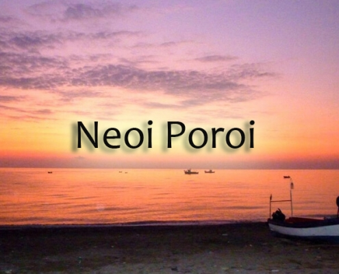 taxi transfers to neoi poroi