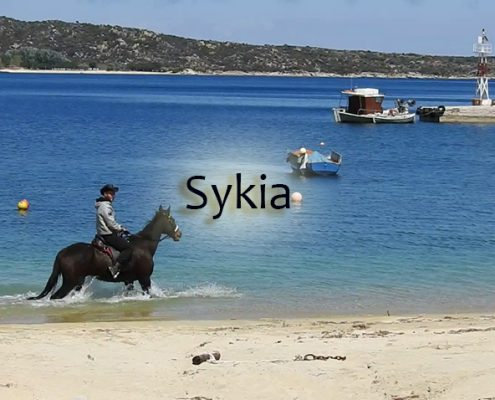 taxi transfers to sykia